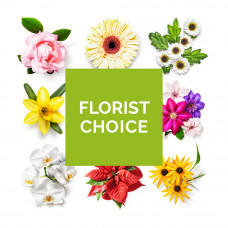 Florists choice gift wrap