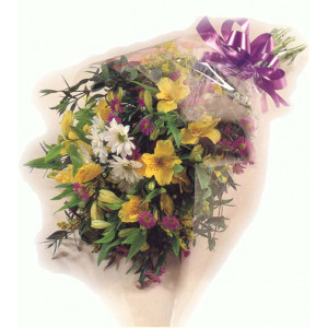 Flowers in Cellophane